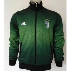 Juventus jacket gree