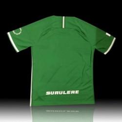 Size:18-19 nigeria green star boy training jerse